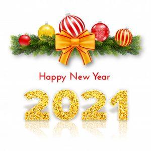 New Year Bonus!